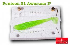 "Pontoon 21 Awaruna 3"" ( реплика)"