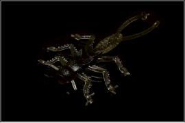 Приманка силиконовая 10102 Microkiller Веснянка (натур. темный) 35мм (8шт)