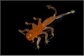 Приманка силиконовая 10101 Microkiller Веснянка (оранжевый флюо) 35мм (8шт)